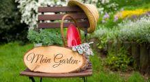 7 Tipps zur Rasenpflege, die den Garten aufwerten