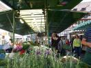 Kräuterzauber beim Weinheimer Bauernmarkt