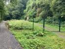 Gewinn für Mensch und Natur: Wanderweg am Steinbruch Gumpental verlegt